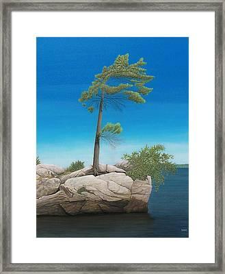 Tree In Rock Framed Print by Kenneth M  Kirsch