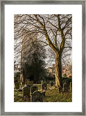 Tree In St Mary Magdalene's Church Yard Framed Print