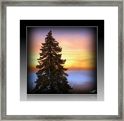 Tree In Sunrise Framed Print by Michelle Frizzell-Thompson