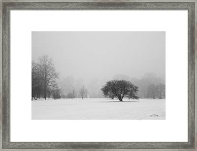 Framed Print featuring the photograph Tree In The Fog by Ed Cilley