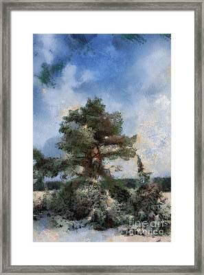 Tree In The Wintery Landscape Framed Print