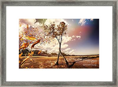 Tree Leaves On A Sea Change Framed Print by Jorgo Photography - Wall Art Gallery