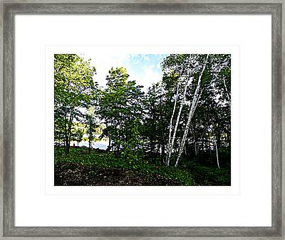 Tree Lined Lake Framed Print by Dianne  Lacourciere