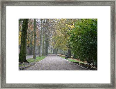 Framed Print featuring the photograph Tree Lined Path In Fall Season Bruges Belgium by Imran Ahmed
