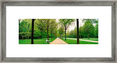 Tree-lined Road Hessen Kassel Vicinity Framed Print by Panoramic Images