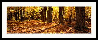 Quabbin Reservoir Framed Prints