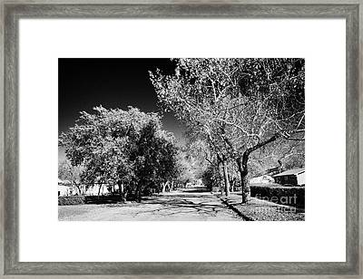 tree lined street in small rural town of Bengough Saskatchewan Canada Framed Print by Joe Fox