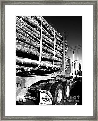 Tree Logger Framed Print