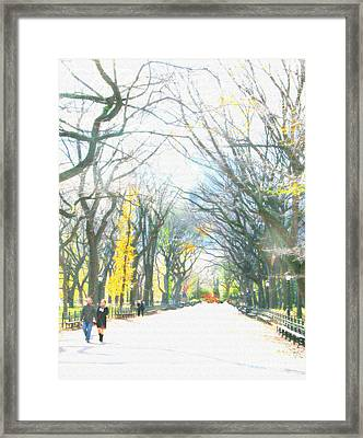 Tree Lovers Lane Framed Print by Gabrielle Schertz