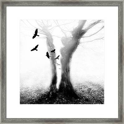 Framed Print featuring the photograph Tree by Mariusz Zawadzki