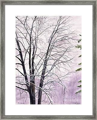 Framed Print featuring the painting Tree Memories by Melly Terpening
