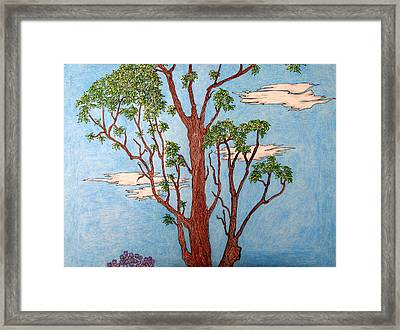 Tree Middle 2 Of 3 Framed Print