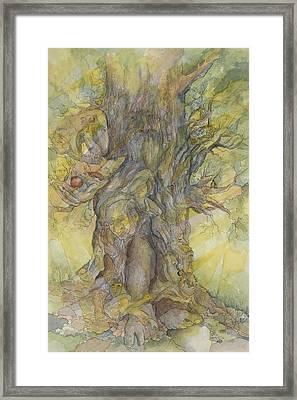 Tree Of Comfort Framed Print
