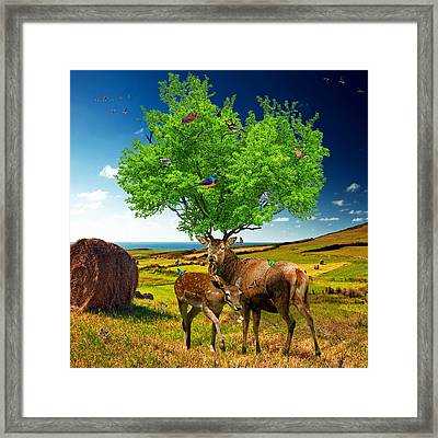 Tree Of Life Framed Print by Marian Voicu