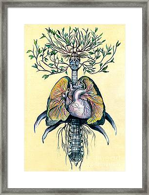 Tree Of Life Framed Print by Michael Volpicelli