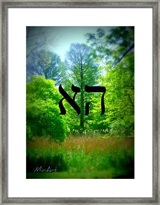 Tree Of Life Framed Print by Miriam Shaw