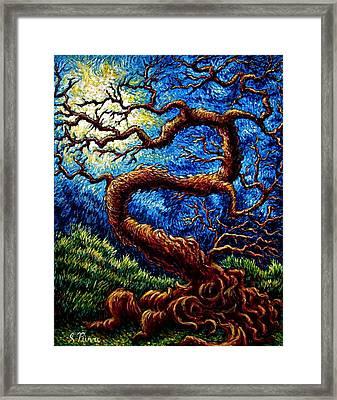 Tree Of Life Framed Print by Sebastian Pierre