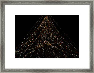 Tree Of Lights Framed Print
