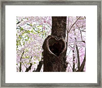 Tree Of Love Framed Print