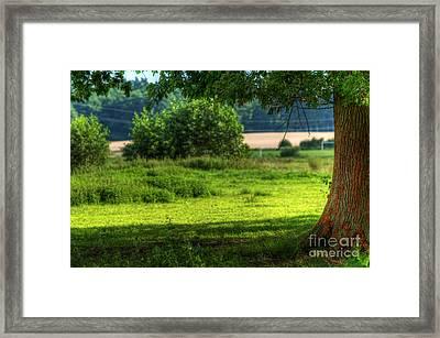 Tree On Summer Field Framed Print by Michal Bednarek