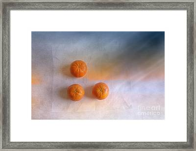 Tree Orange Framed Print by Veikko Suikkanen