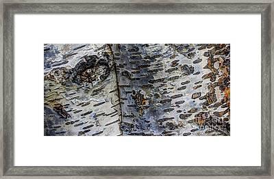 Tree People Framed Print by Heidi Smith