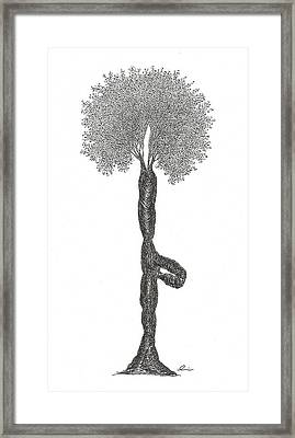 Tree Pose Framed Print