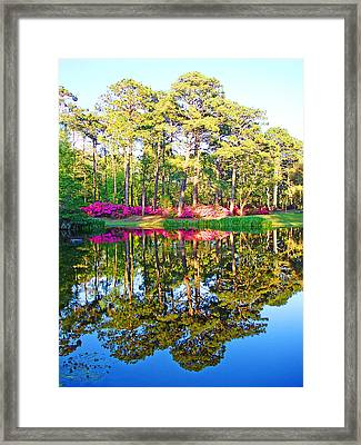 Tree Reflections And Pink Flowers By The Blue Water By Jan Marvin Studios Framed Print