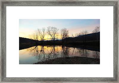 Tree Reflections Landscape Framed Print