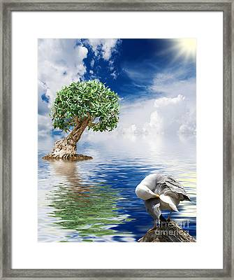 Tree Seagull And Sea Framed Print