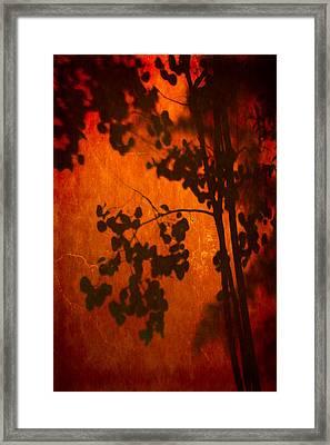 Tree Shadow On Fiery Wall Framed Print