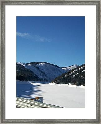Framed Print featuring the photograph Tree Shadows by Jewel Hengen
