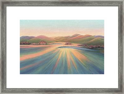 Tree Shadows Sunset Tasmania Framed Print