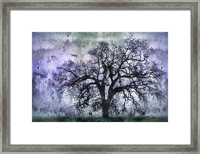 Tree Silhouette In Purple Framed Print by Carol Leigh