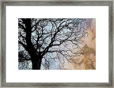 Tree Skeleton Layer Over Opaque Image Framed Print by Judi Angel