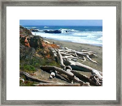 Tree Skeletons At Ocean's Edge Framed Print