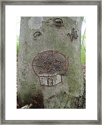 Tree Spirit Framed Print by Robert Nickologianis