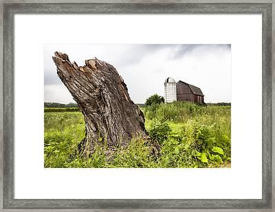 Tree Stump And Barn - New York State Framed Print by Gary Heller