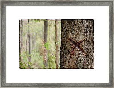 Tree That Bleeds X Framed Print by River Engel