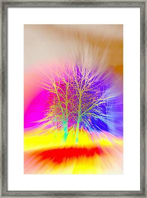 soon it will be tree time and then I hope that you will invite me to climb with you  Framed Print