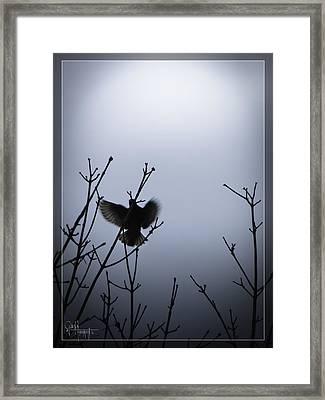 Tree Top Landing Framed Print