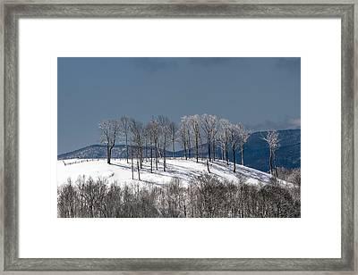 Tree Topper Hill Framed Print by John Haldane