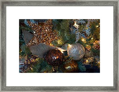 Tree Trimmings Framed Print by Patricia Babbitt