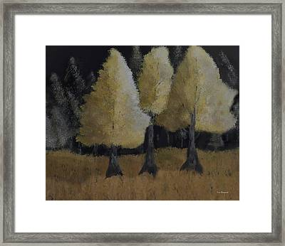 Tree Trio Framed Print by Dick Bourgault