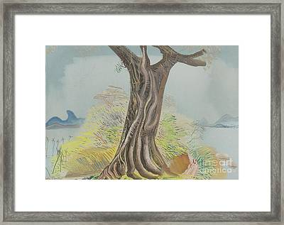 Tree Trunk Framed Print by Celestial Images