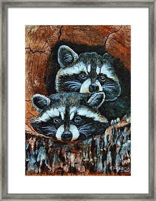 Tree Trunk Raccoons Framed Print