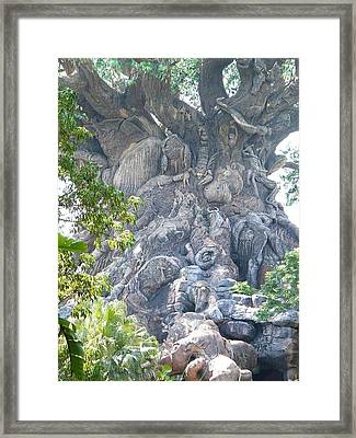 Tree Upclose Framed Print