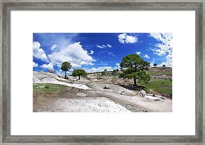 Tree Valley Framed Print by Camilla Fuchs
