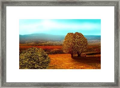 Tree Watch Framed Print