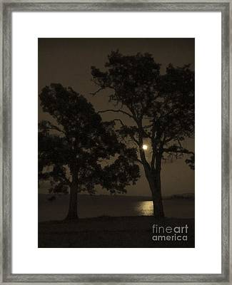 Tree Whispers In Sepia Framed Print by Cheryl Wood